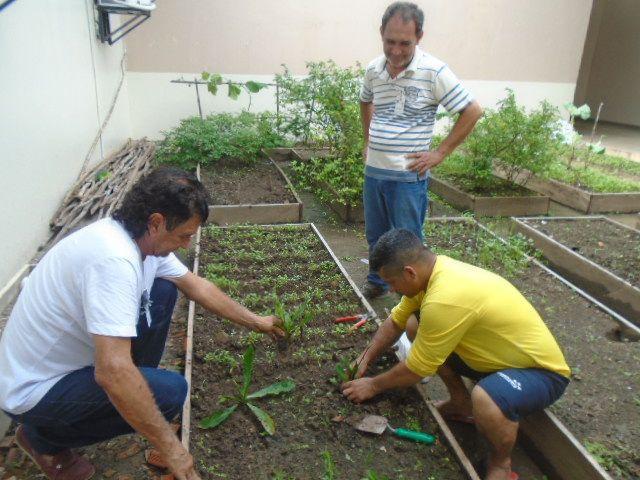 """Presos do Amazonas aprendem técnicas de cultivo de hortaliças em projeto """"Plantando a Liberdade"""""""