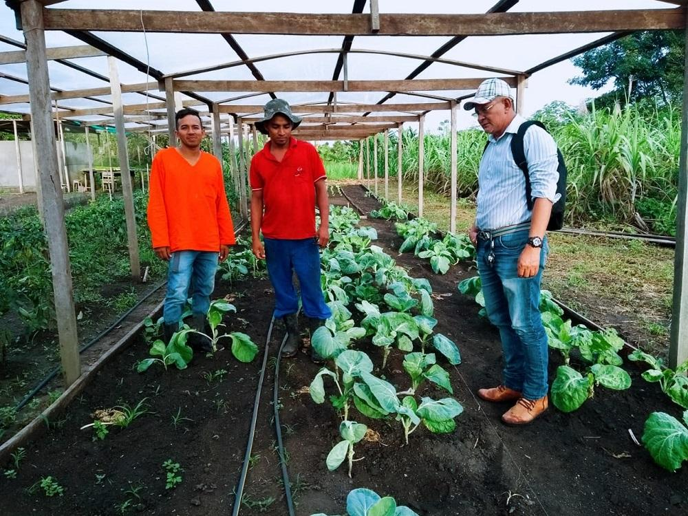 Agricultor de 22 anos se destacana produção de hortaliças e frutasem Urucurituba