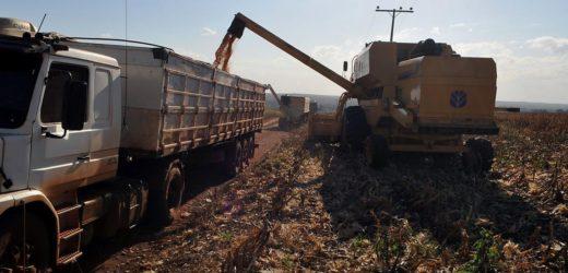 MP deve ampliar créditos para financiamento do agronegócio